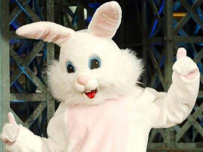 alg-bunny-costume-jpg